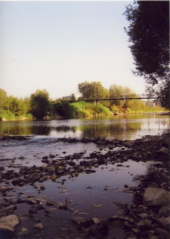 monika-warchol-1